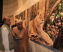Javed Akhtar Inagaurates Former Union Minister Kamal Morarka art Exhibition – THE Big Cats