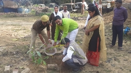 Elite Foundation's Tree Plantation Drive Reaches Uttar Pradesh